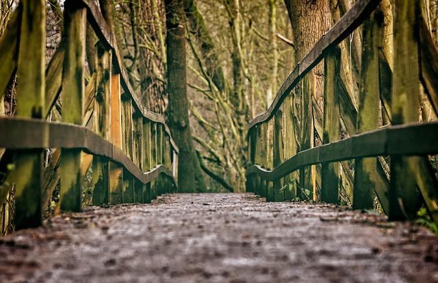 lesní zábradlí