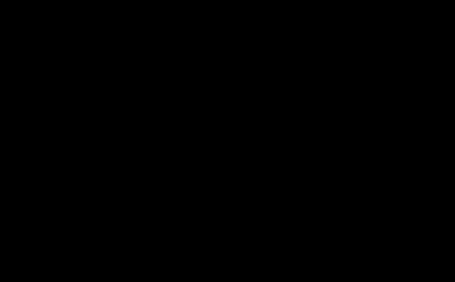 silueta brány