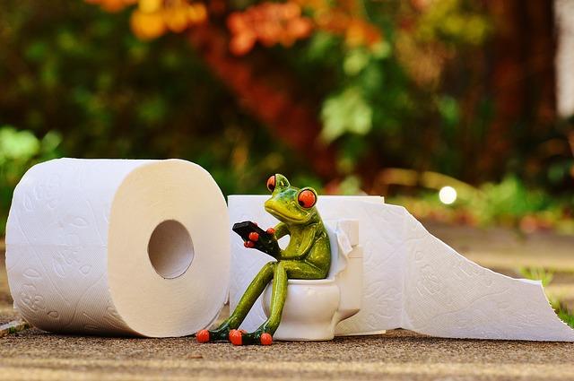 žába na wc.jpg