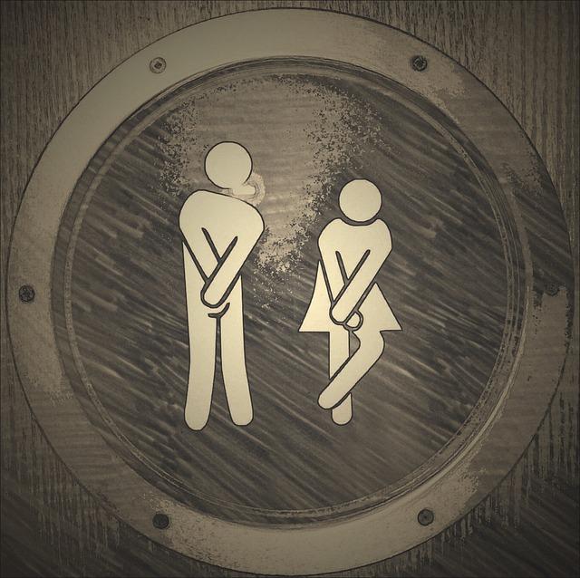 veřejné wc.jpg