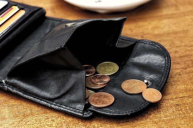 drobné v peněžence